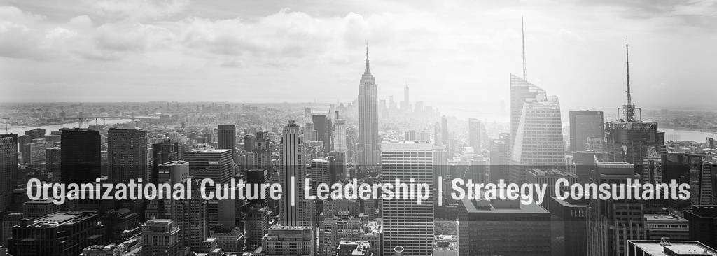 organizational culture and leadership consultants